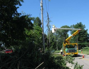 The power company cutting a branch out of the power lines